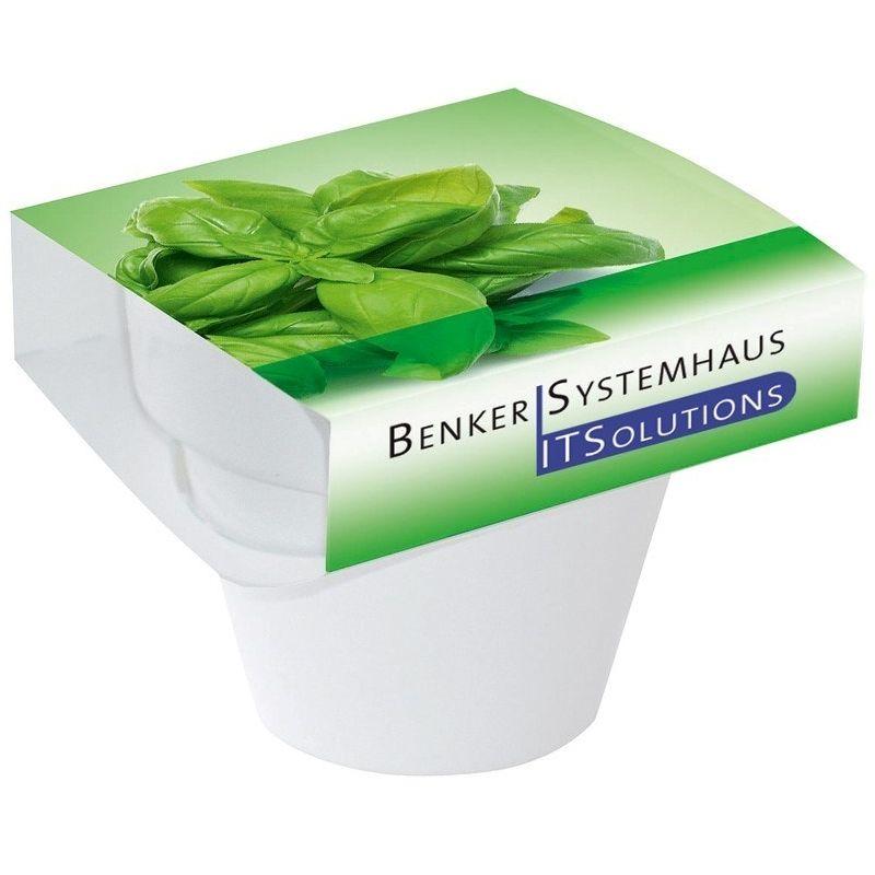 111869457283 - Pot Couleur Basilic, graines de basilic, incl. mar